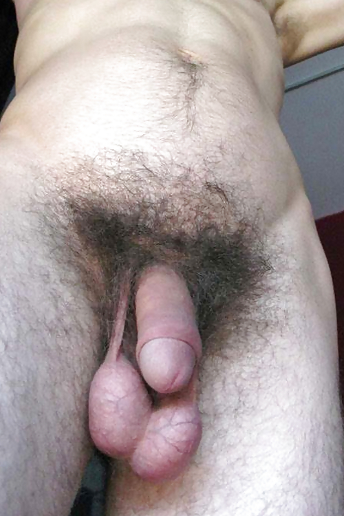 Boy with small hairy cock and big balls likes her girlfriend with hairy pussy and small firm tits
