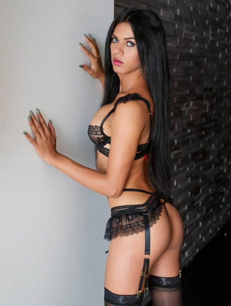 Sarasota Shemale Escorts, Transvestites And Transsexuals In Florida