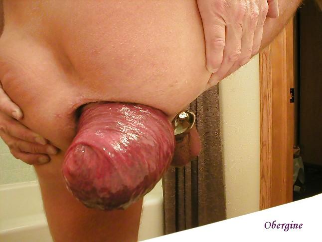 Большие прямая кишка порно
