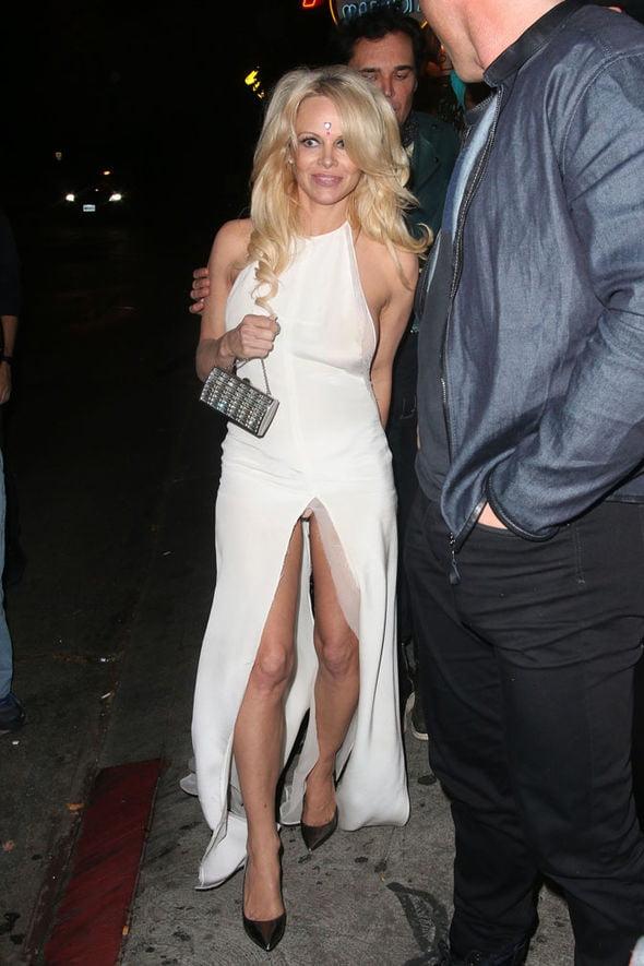 US Milf Pamela Anderson - 105 Pics