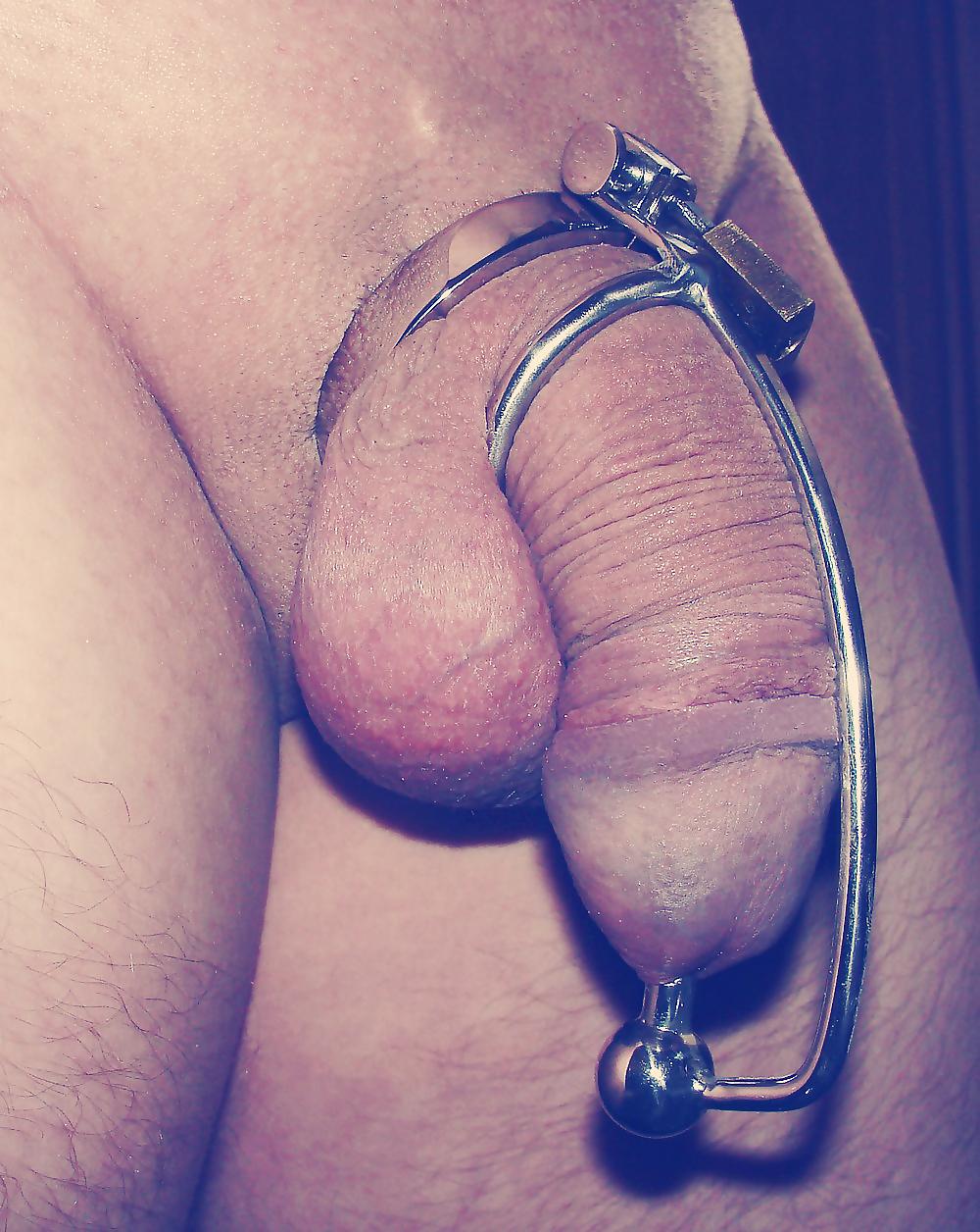 Snake Head Shape Teeth Male Chastity Cage Sleeve Lock