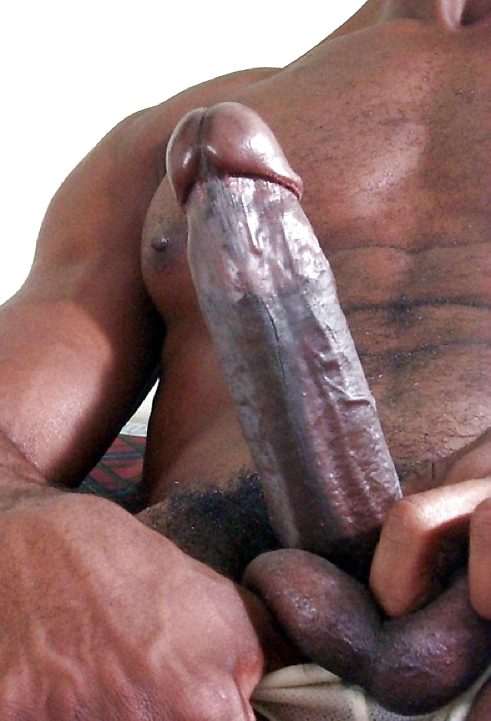 Gay black porn penis pictures