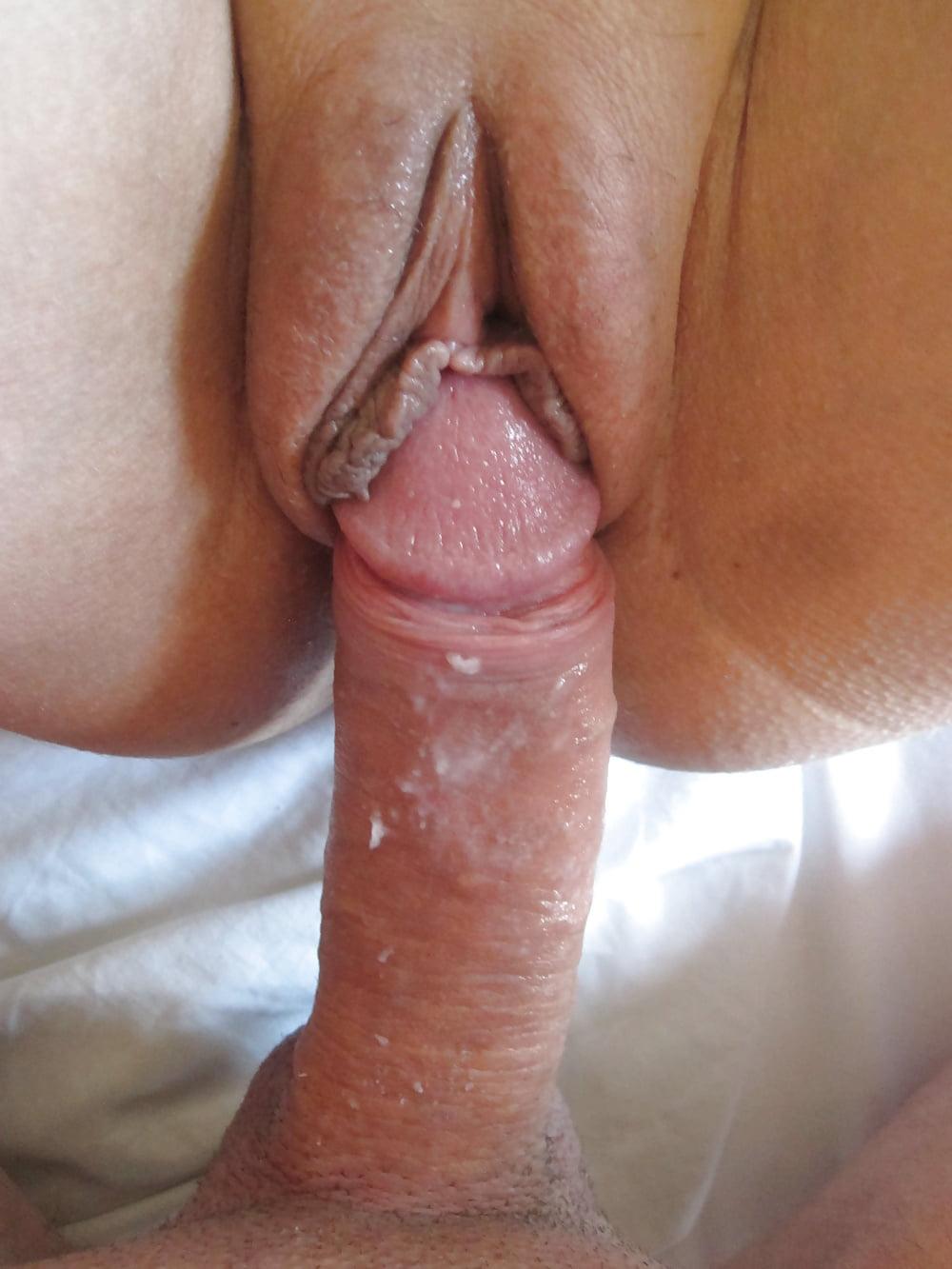 Long Animal Dildo Realistic Glans Penis