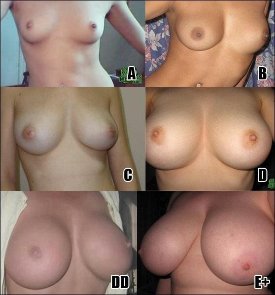 Naked B Cup Boobs