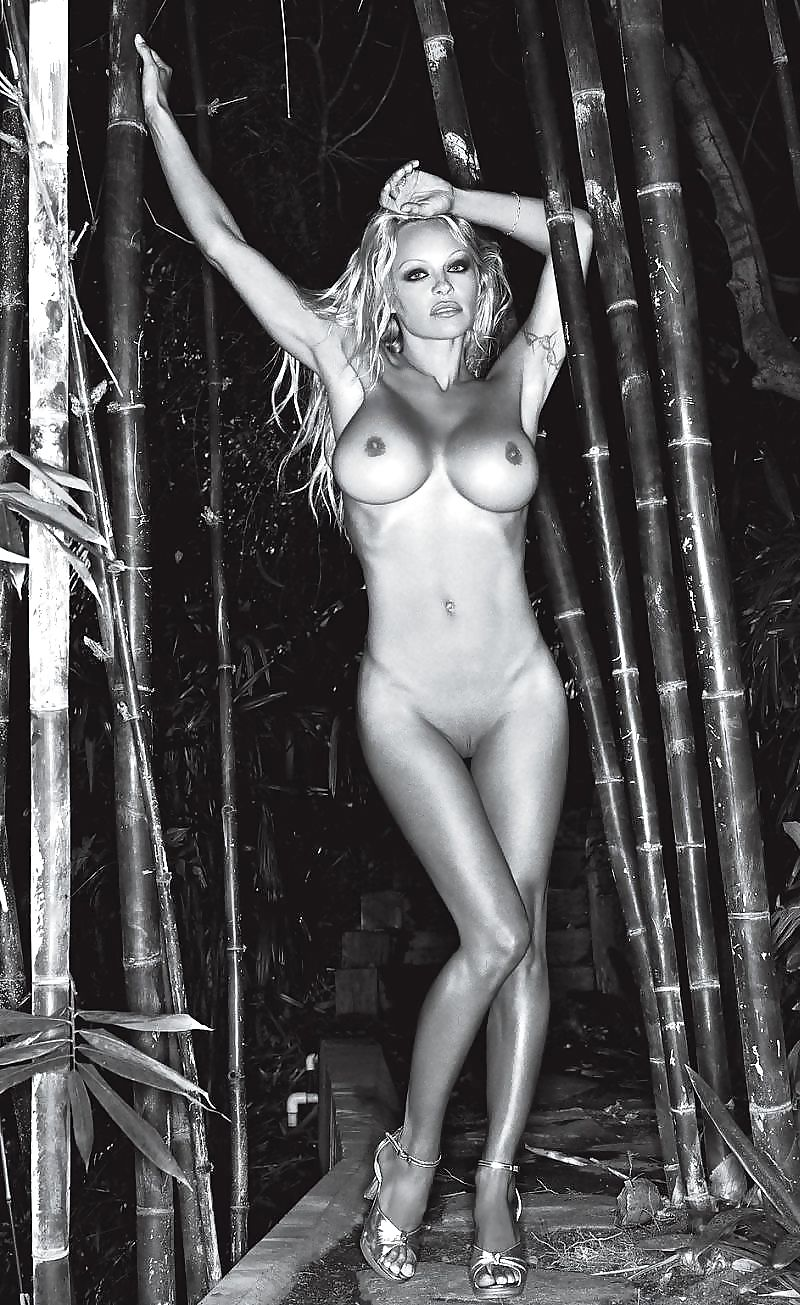 pam-anderson-big-nude-tits