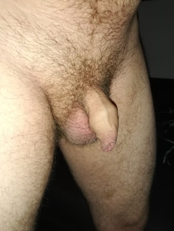 Penis unbeschnittener Beschnittener Schwanz