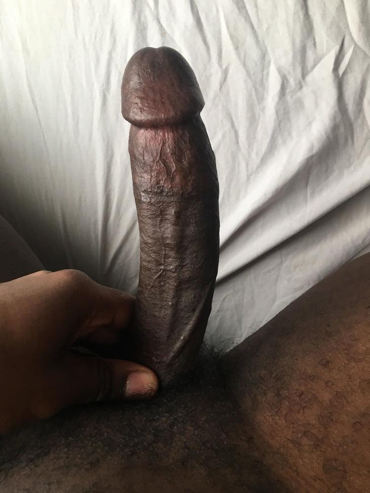 Tylee inch black cock porno boob
