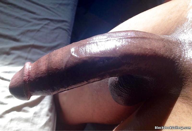 Bbw big black cock