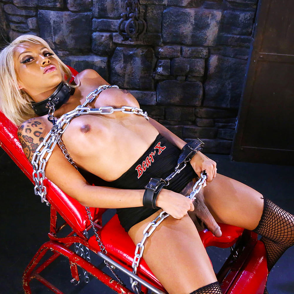 zealand-bdsm-tranny-chat-girls
