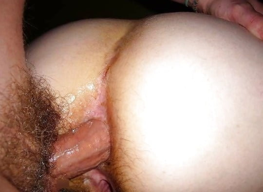 Hairy anal porn-4061