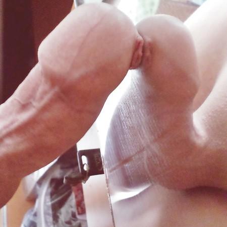 Penisgallerie