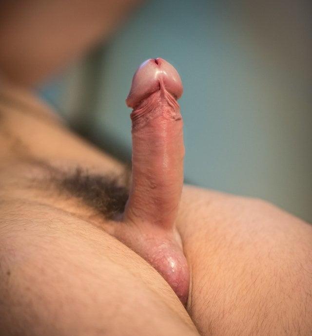 Penis on