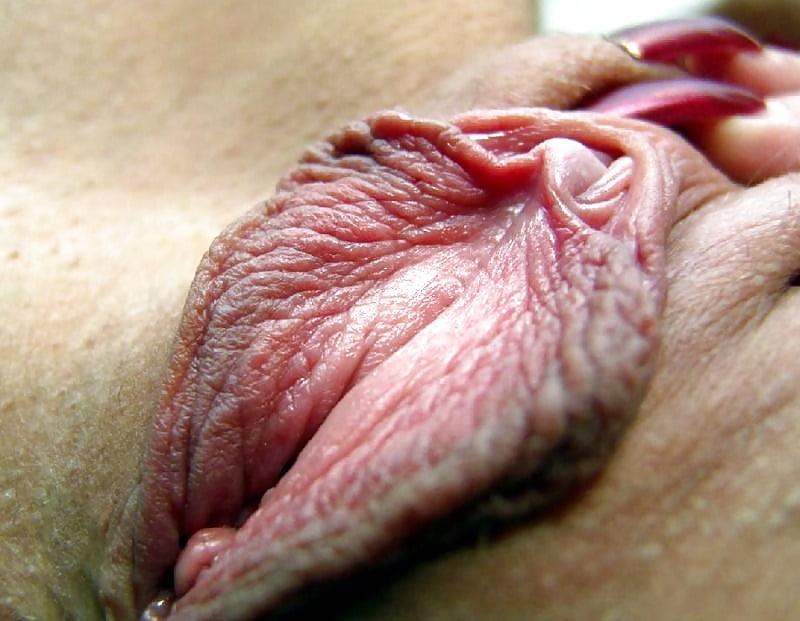 Порно фотогалерея женские ножки конечном