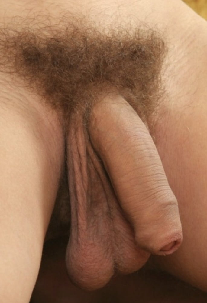 Hairy penis or shaved penis — 7